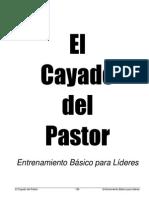MCE 11 El Cayado Del Pastor EntrenamientoBasicoParaLideres