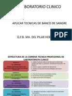 Banco de Sangre Presentacion