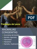 Patologia Del Aparato Genital Masculino