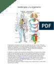 La Presoterapia y Tu Organismo