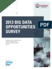 2013 Big Data Opportunities Survey