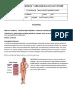 PRE INFORME 8.docx