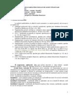 Aplicarea procesului de audit.Aplicarea Procesului de Audit