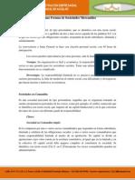 4.- Formas de Sociedades