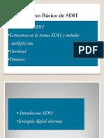 SDH Basico Corregido