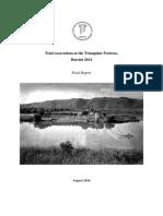 Triangular Fortress Report