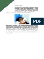 Antecedentes de La Morfología Dentaria o Dental