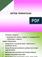 Sistem Pernafasan.
