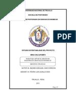 Estudio de Rentabilidad Del Proyecto Mina Chilcapampa Peru