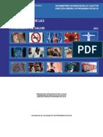 MPPS Fundamentos de Las Normas - Programas de Salud Año 2012
