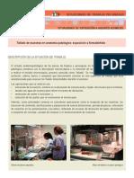 Protocolo Exposicion Formol