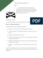 Leccion 8.5.2 C.II.1.3. Pirateria