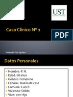 capsul.pdf