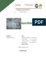 Reactores Multifasicos Final