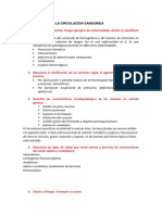 Cuestionario Anatomia Patologica
