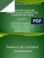 ndicesdecalidaddevidaycalidadambiental-111124173917-phpapp02