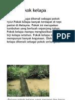 Fakta pokok kelap1.docx
