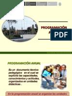 Programacion Anual Comunicacion