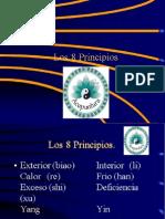 8 Principios x