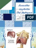 Anomalias Congenitas Del Diafragma