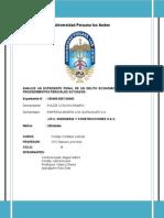 analisis de un expediente penal de un delito economico.doc