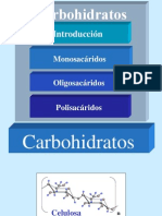 Carbohidratos Medicina