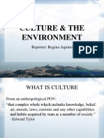 Culture & the Environment