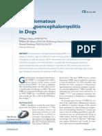Granulomatous meningomyelitis (2)