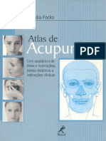 Claudia Focks - Atlas.pdf