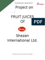 Shezan Project Marketing 2009
