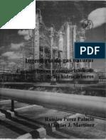 Ingenieria de Gas M.Martinez