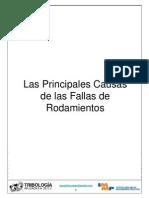 2 Las Principales Causas de las Fallas de Rodamientos.ppt