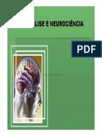 05 - Psicanálise e Neurociência. 2013..pdf