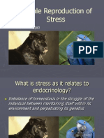 Female -reproduction-stress 3rd lecture.ppt