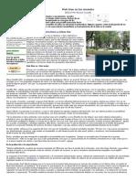 Vivir Bien en Las Ciudades - EcoPortal
