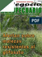 NEGOCIO AGROPECUARIO - N 4 - 18 02 13 - PARAGUAY - PORTALGUARANI