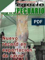 NEGOCIO AGROPECUARIO - N 5 - 25 02 13 - PARAGUAY - PORTALGUARANI