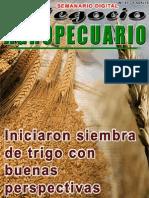 NEGOCIO AGROPECUARIO - N 11 - 13 05 13 - PARAGUAY - PORTALGUARANI