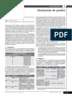 DECLARACION DE PREDIS.pdf