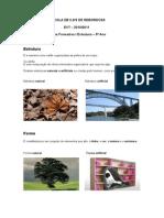 Ficha Formativa Estrutura