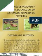 Sistemas de Pastoreo