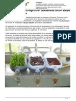 Importancia Vegetacion Experimento