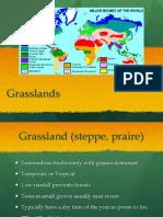 Grasslands.pptx