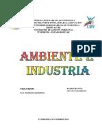 Ambiente e Industria 2