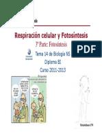 GTP_T14.Respiración Celular y Fotosíntesis _(3ªParte_Fotosíntesis) 2011-13