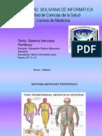 Sitema Nervioso Periferico(PDF).Anato.