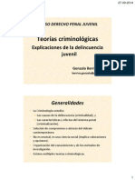 Teor as Criminol Gicas Delincuencia Juvenil 2014