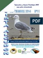 Revista Alcudón Nº 11