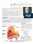 Apendicitis Aguda c 110219210040 Phpapp02