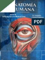 Tratado Anatomia Humana